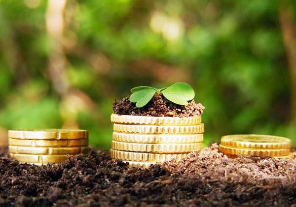 Когда пенсионеры могут не платить земельный налог?